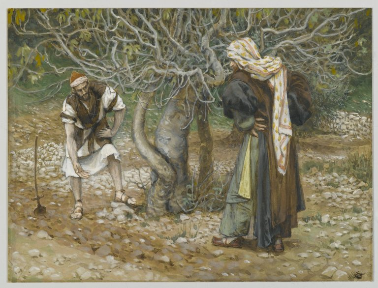 The Vine Dresser and the Fig Tree by James Tissot (public domain via Wkimedia Commons)
