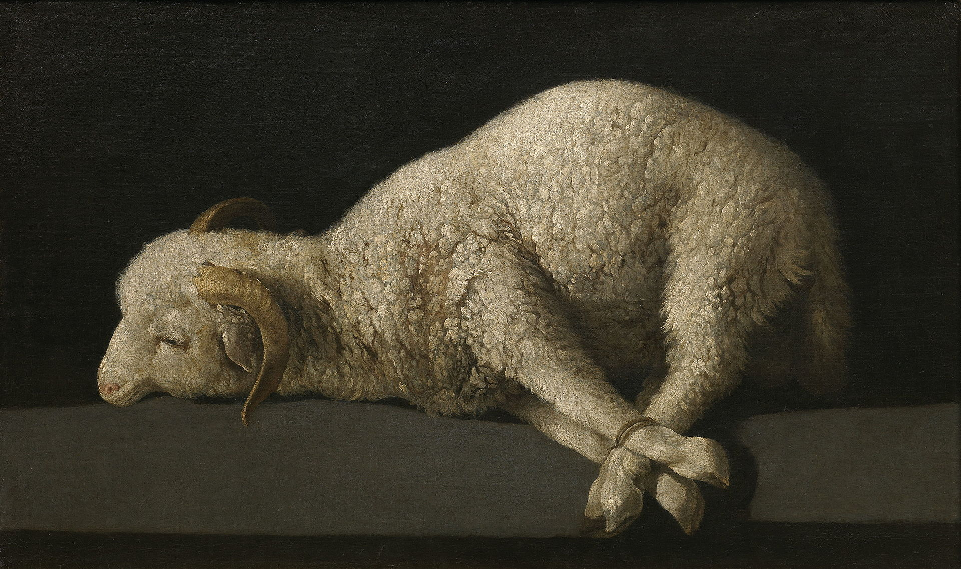 Lamb of God by Zurbaran pubic domain via Wikimedia Common s